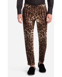 Dolce & Gabbana - Printed Cotton Pants - Lyst
