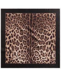 Dolce & Gabbana Foulard De Seda Con Estampado De Leopardo - Multicolor