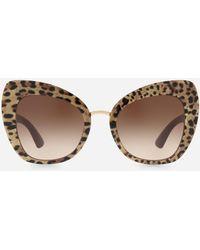 Dolce & Gabbana Dg4319 - Brown