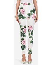 Dolce & Gabbana Cady Fabric Tropical Rose Print LEGGINGS - Multicolour