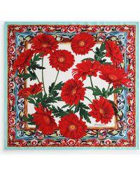 Dolce & Gabbana Gerbera-print Twill Scarf (70 X 70) - Red