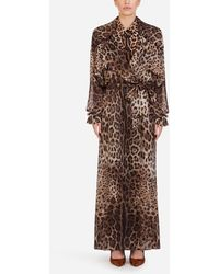 Dolce & Gabbana Organza Trench Coat With Leopard Print - Brown
