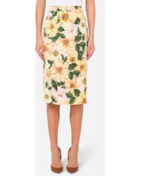 Dolce & Gabbana Camellia-Print Calf-Length Pencil Skirt - Amarillo