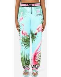 Dolce & Gabbana Jersey jogging Pants With Flamingo Print - Blue