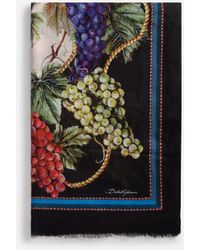 Dolce & Gabbana Modal And Cashmere Scarf With Grape Print: 135 X 200Cm- 53 X 78 Inches - Mehrfarbig