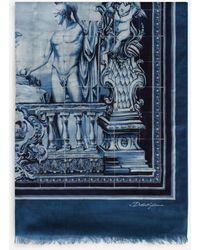 Dolce & Gabbana Modal Majolica-print Scarf - Blue
