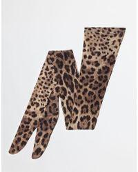 Dolce & Gabbana - Medias Estampadas - Lyst