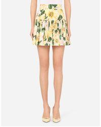 Dolce & Gabbana Short Circle Skirt In Camellia-print Poplin - Yellow