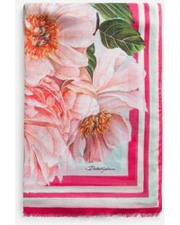 Dolce & Gabbana Camellia-print Cashmere And Modal Scarf (135 X 200) - Pink