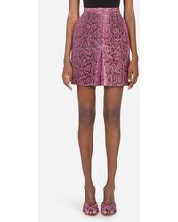 Dolce & Gabbana Bermudas Aus Python - Mehrfarbig
