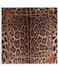 Dolce & Gabbana Twill Foulard With Leopard Print: 50 X 50Cm- 19 X 19 Inches - Marrón