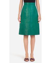 Dolce & Gabbana Midirock Aus Amerikanischem Alligatorleder Silky - Grün