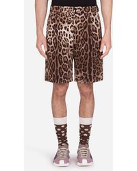 Dolce & Gabbana Stretch Cotton Bermuda Shorts With Leopard Print - Mehrfarbig