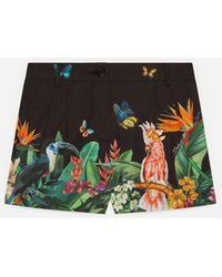 Dolce & Gabbana Poplin Shorts With Jungle Print - Green