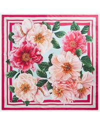 Dolce & Gabbana Camellia-print Twill Scarf (90 X 90) - Pink