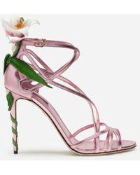Dolce & Gabbana Kiera Lily-embroidered Sandals - Pink