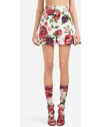 Dolce & Gabbana - Peony-print Brocade Shorts - Lyst