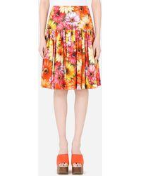 Dolce & Gabbana Poplin Midi Skirt With Gerbera-daisy Print With High Waistband - Red