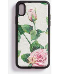 Dolce & Gabbana Iphone Xs Max Hülle Aus Dauphine-Kalbsleder Mit Tropischem Rosendruck - Mehrfarbig