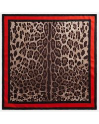 Dolce & Gabbana Twill Foulard With Leopard Print 70 X 70Cm- 275 X 275 Inches - Multicolor