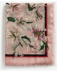 Dolce & Gabbana Lily-print Cashmere And Modal Scarf (135 X 200) - Pink