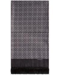 Dolce & Gabbana Silk Scarf With Tie Print - Black
