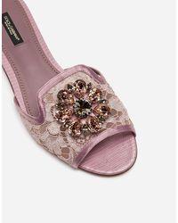 Dolce & Gabbana Sandale Aus Spitze Mit Kristallen - Mehrfarbig