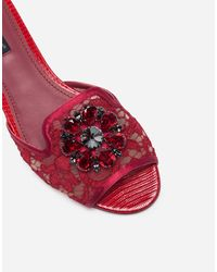 Dolce & Gabbana Slippers In Lace With Crystals - Rot