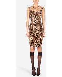 Dolce & Gabbana Leopard-Print Cady Corset-Style Midi Dress - Multicolor