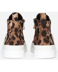 Dolce & Gabbana Cotton Drill Portofino Light Mid-top Trainers With Leopard Print - Brown