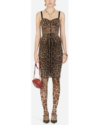 Dolce & Gabbana Tulle Midi Bustier Dress With Leopard Print - Multicolor