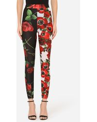Dolce & Gabbana Jersey leggings With Anemone And Rose Print - Red