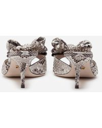 Dolce & Gabbana Python Sliders With Bow - Rouge