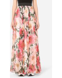 Dolce & Gabbana Long Camellia-print Chiffon Skirt - Pink