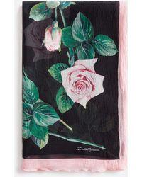 Dolce & Gabbana Tropical Rose Print Silk Scarf 120 X 200 - Multicolour