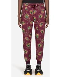 Dolce & Gabbana Jersey Jogging Pants With Peacock Print - Rot
