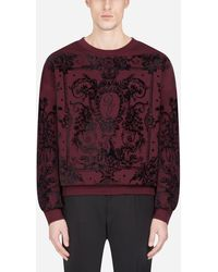 Dolce & Gabbana Sweatshirt Aus Baumwolle Mit Beflocktem Print - Lila