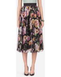 Dolce & Gabbana Long Nocturnal Flower Printed Organza Skirt - Multicolour