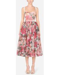 Dolce & Gabbana 50s-style Midi Dress In Camellia-print Tulle - Multicolor