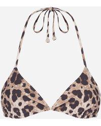 Dolce & Gabbana Triangle Bikini Top With Leo Print - Multicolour
