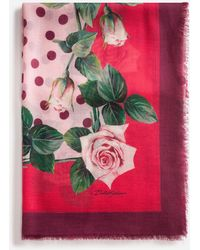 Dolce & Gabbana Tropical Rose Print Cashmere And Modal Scarf 135 X 200 - Pink