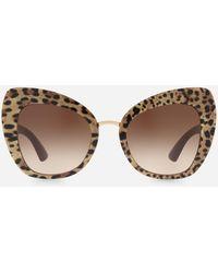 Dolce & Gabbana Sonnenbrille Print Family - Braun