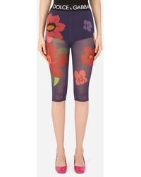 Dolce & Gabbana Floral-print Marquisette Cycling Shorts With Branded Elastic - Multicolour