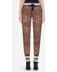 Dolce & Gabbana Jogginghose Aus Jersey Leoparden-Print - Mehrfarbig