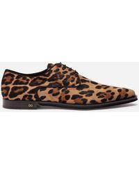 Dolce & Gabbana Leopard-print Pony Hair Derby Shoes - Brown