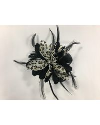 Dorothy Perkins - Multi Colour Feather Leopard Print Fascinator Clip - Lyst