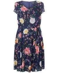 Dorothy Perkins - Billie & Blossom Curve Navy Soft Belt Skater Dress - Lyst