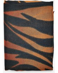 Dorothy Perkins - Ombre Zebra Print Scarf - Lyst