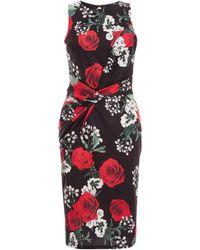 Dorothy Perkins Quiz Multicolour Rose Print Knot Front Dress, Multi