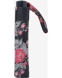 Dorothy Perkins - Multi Coloured Floral Sprig Umbrella - Lyst